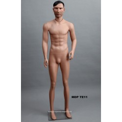 Standing Male MDP TE11 Removable head