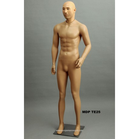 Asian Standing Male MDP TE25 Removable head