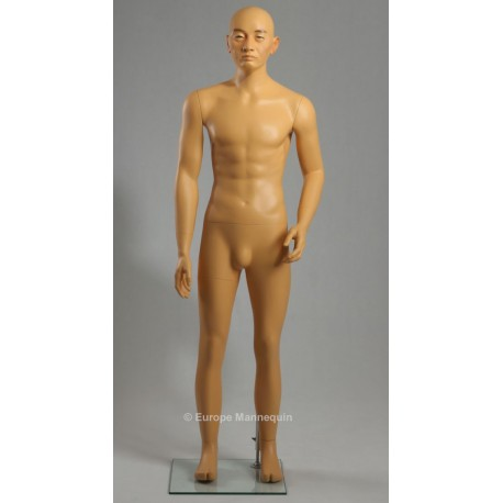 Europe Mannequin Asian Male MDJ01