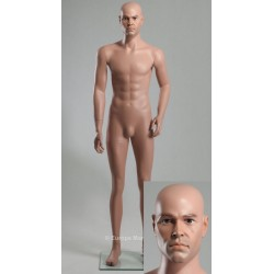 Europe Mannequin Standing Male MDP 14